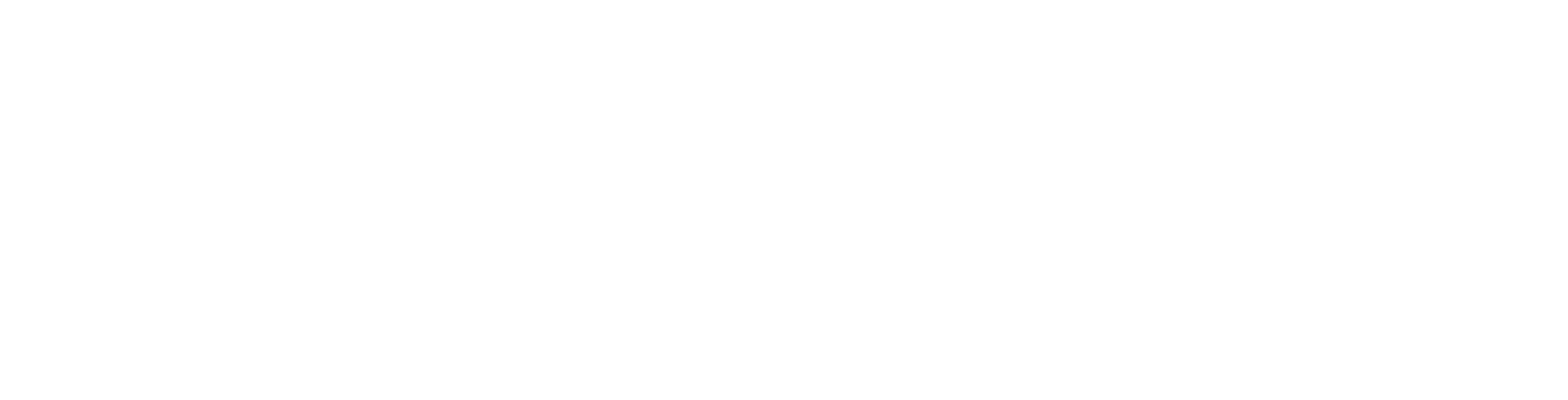 TransferPlay